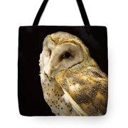 Barn Owl In A Dark Tree Tote Bag