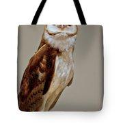 Barn Owl Of Michigan Tote Bag