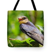 Barn Swallow In Sunlight Tote Bag