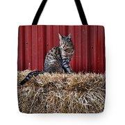 Barnyard Cat Tote Bag