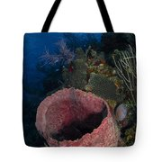 Barrel Sponge Seascape, Belize Tote Bag