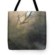Barren Beauty Tote Bag