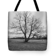 Barren Tree On A Winters Day Tote Bag