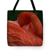Bashful Elegance Tote Bag