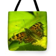 Basking Butterfly  Tote Bag
