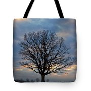 Basking In The Pink And Blue Sky Tote Bag