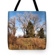 Bass Pond Trees 2012 Tote Bag