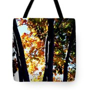 Bathed In Sunlight Tote Bag