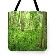 Baton Rouge Blueonnet Swamp  La Tote Bag