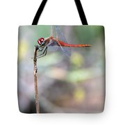 Battling Against The Elements Of Nature Tote Bag