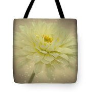 Be A Star Tote Bag by Angela Doelling AD DESIGN Photo and PhotoArt