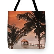 Beach Belize Tote Bag