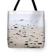 Beach Detail On Pacific Ocean Coast Of Canada Tote Bag