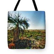 Beach Palm Morning Tote Bag