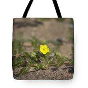 Beach Wildflower Tote Bag