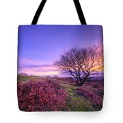 Beacon Hill Sunrise 1.0 Tote Bag