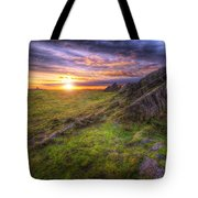 Beacon Hill Sunrise 11.0 Tote Bag