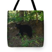 Bear Cub Tote Bag
