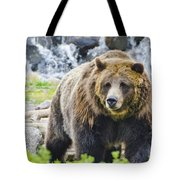 Bear On The Prowl. Tote Bag