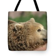 Bear Profile Tote Bag