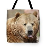 Bear Rasberry Tote Bag