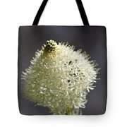 Beargrass Squaw Grass  1 Tote Bag