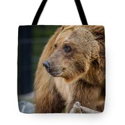 Bearing With It Tote Bag