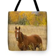 Beautiful Chestnut Horse Tote Bag