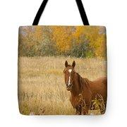 Beautiful Grazing Horse Tote Bag