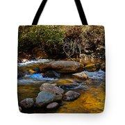 Beautiful Colors Tote Bag
