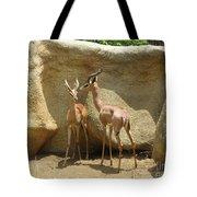 Beautiful Couple Tote Bag