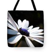 Beautiful Daisy Tote Bag