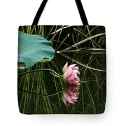 Beautiful Fallen Lotus Tote Bag