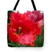 Beautiful From Inside And Out - Parrot Tulips In Philadelphia Tote Bag