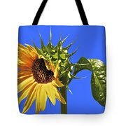 Beautiful Moves In Curves Tote Bag