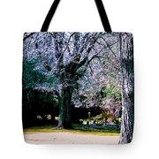 Beautiful Parkland Digital Drawing Tote Bag