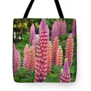Beautiful Pinks Tote Bag
