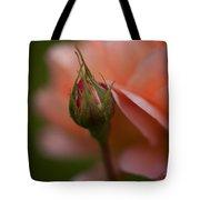 Beautiful Potential Tote Bag