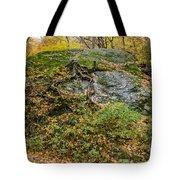 Beautiful Vermont Scenery 14 Tote Bag