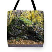 Beautiful Vermont Scenery 15 Tote Bag
