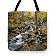 Beautiful Vermont Scenery 16 Tote Bag
