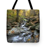 Beautiful Vermont Scenery 17 Tote Bag
