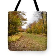 Beautiful Vermont Scenery 25 Tote Bag
