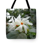 Beautiful White Flower With Orange Center Tote Bag