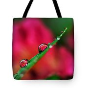 Beauty After The Rain Tote Bag