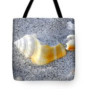 Beauty In Sand Tote Bag