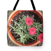 Beauty In Sun After A Rain Shower Tote Bag
