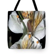 Beauty Untold Tote Bag