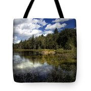 Beaver Lodge Tote Bag