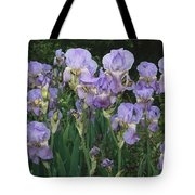 Bed Of Irises, Provence Region, France Tote Bag